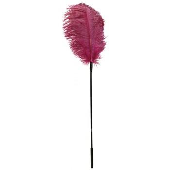 Spalva rozā fetish Collection